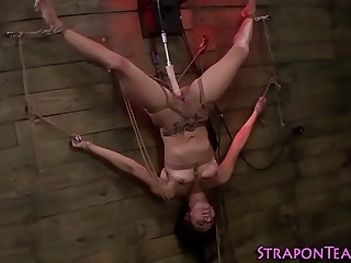 Les mistress pounds slave